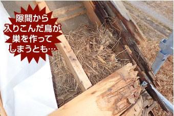 隙間から入りこんだ鳥が巣を作ってしまうとも…