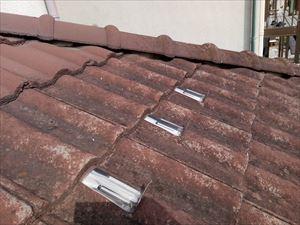 高崎市南陽台屋根のコケ