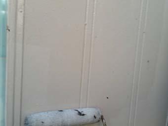 北群馬郡吉岡町 外壁下塗り