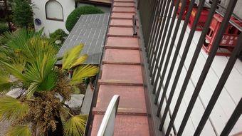 渋川市赤城外壁トタンの下屋根