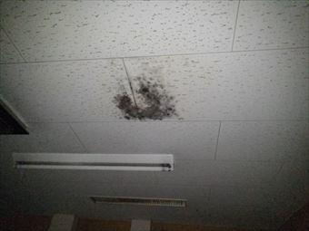 前橋市大胡町店舗天井に雨シミとカビ