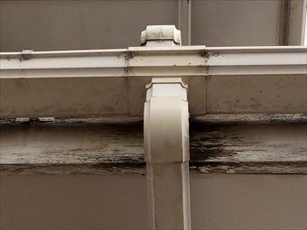 高崎市金古町雨どいの状態
