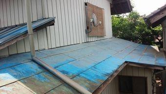 高崎市北原町屋根のさびと苔