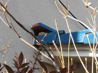 外壁 下屋根瓦
