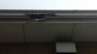 佐波郡玉村町白い出窓のあるお宅の雨樋