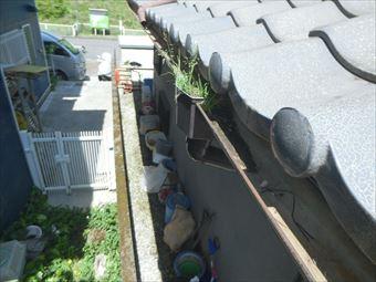 渋川市赤城町雨どいのゴミ