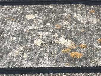 前橋市上大島町K様邸屋根塗装4