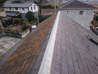 前橋市富士見町K様屋根の北側コケ