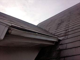 高崎市石原町屋根のコケと藻
