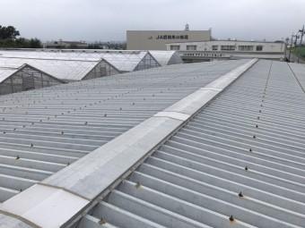 工場屋根塗装施工前