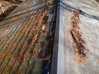吾妻郡東吾妻町別荘屋根積もった枯葉と取れた棟板金