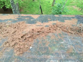 前橋市屋根塗装着工前②調査