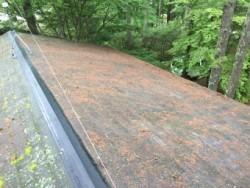 前橋市大屋根塗装調査写真木の葉がいっぱい