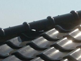前橋市粕川町施工中に近隣屋根漆喰劣化で崩れそう
