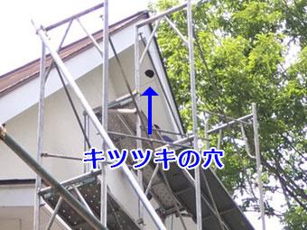 吾妻郡嬬恋村ペンション 軒天 キツツキの穴