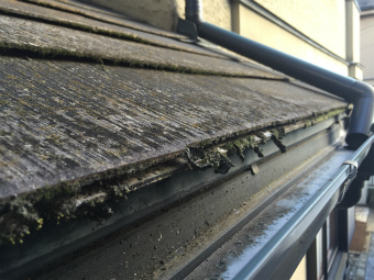 高崎市貝沢町屋根塗装前のコケ