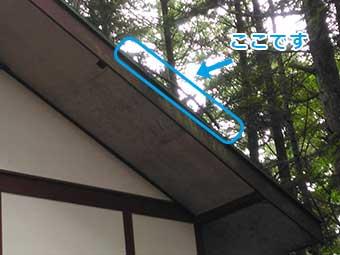 北軽井沢別荘現地調査屋根に枝