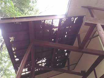 北軽井沢別荘現地調査テラスに積もった落葉