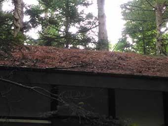 北軽井沢別荘現地調査屋根の落葉